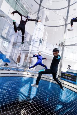 Gravity Indoor Skydiving Static Flyers